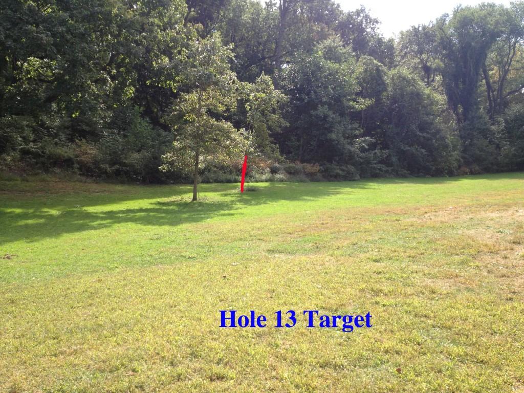 nm13 target