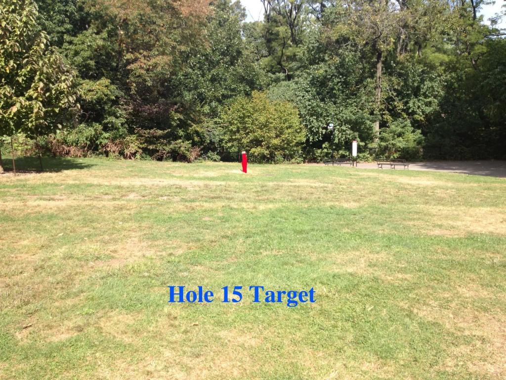nm15 target